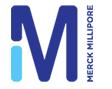 Merck Milliporeよるウエスタンブロット法の日本語プロトコール